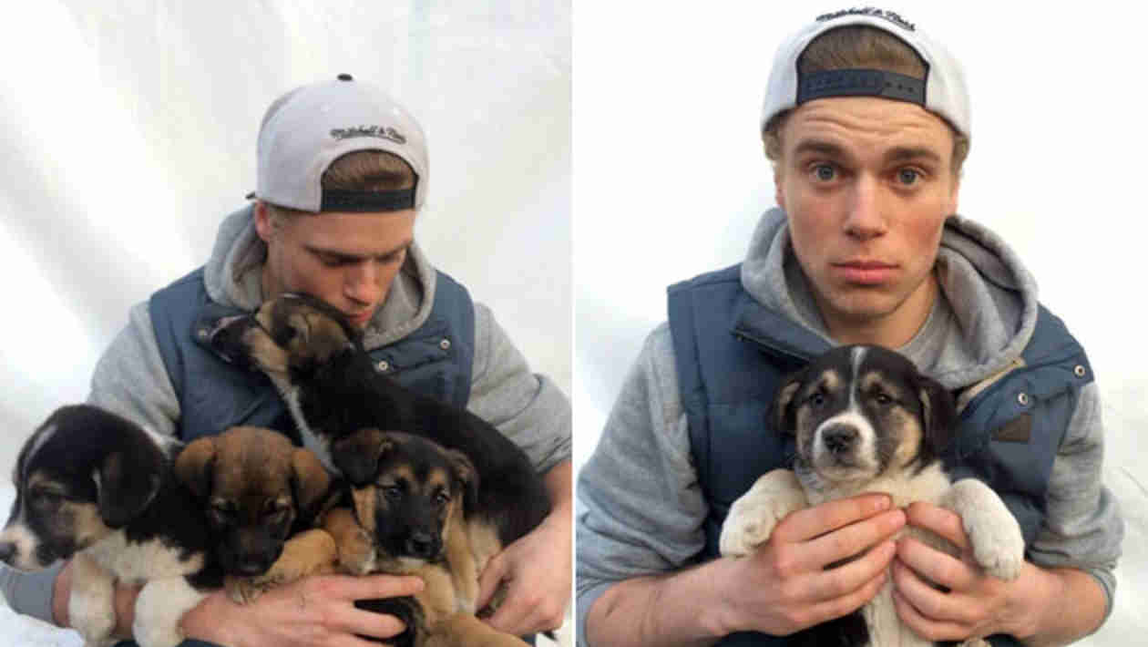 Who Is Gus Kenworthy? 5 Things to Know About the Olympic Puppy-Rescuer
