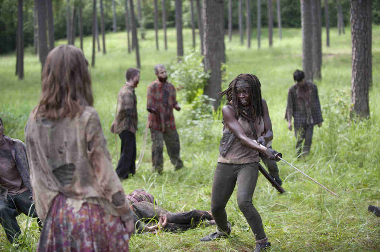 The Walking Dead Season 4 Finale: What's Next For Michonne?