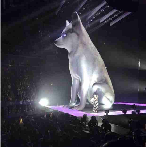 Miley Cyrus Pays Tribute to Floyd With Giant Dog Blow-Up Doll in Concert (PHOTO)