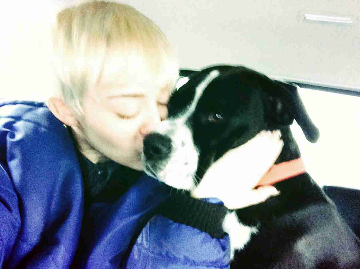 How Many Dogs Does Miley Cyrus Have?