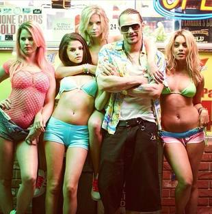 Will Ashley Benson Star in Spring Breakers Sequel?