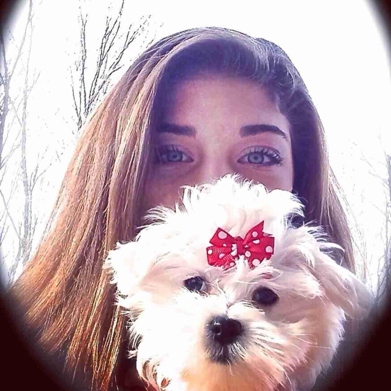 Teresa Giudice Explains Why She and Joe Got the Girls a New Dog