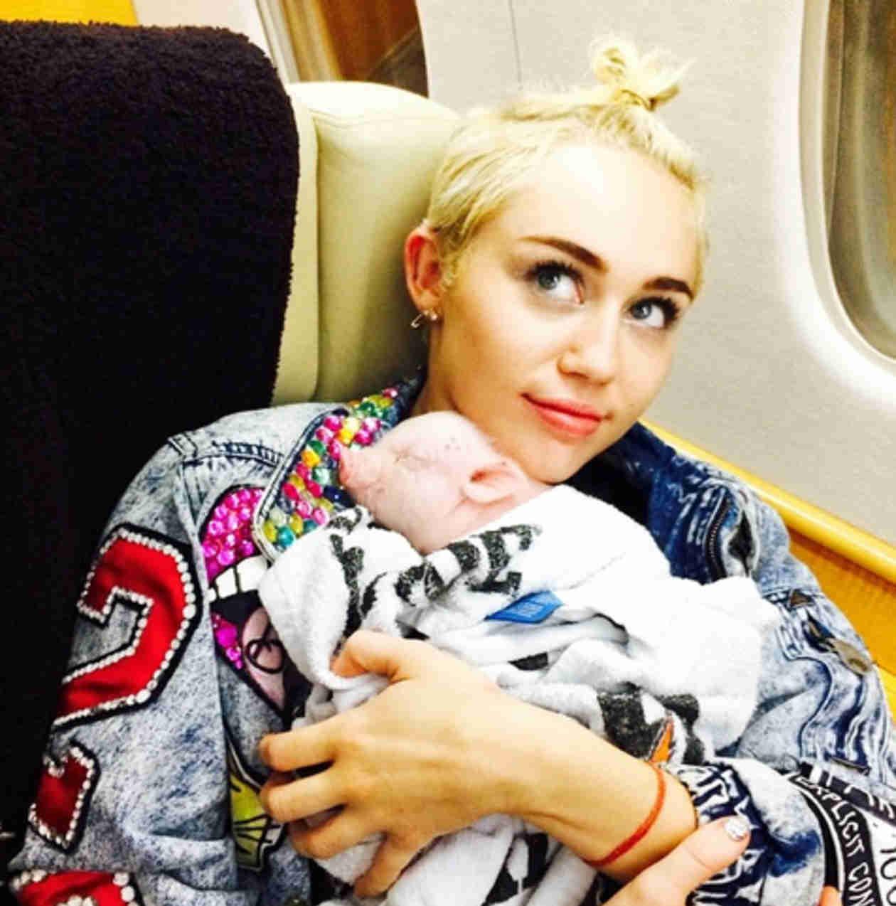 Miley Cyrus Adopts Adorable Pig — Meet Bubba Sue! (VIDEO)