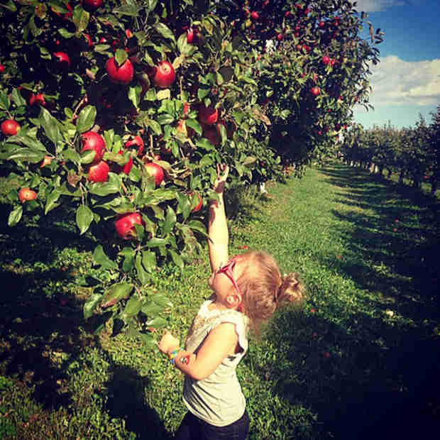 Chelsea Houska and Daughter Aubree Go Apple Picking! (PHOTO)