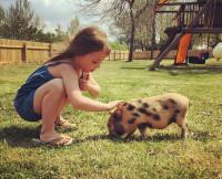 050415-teen-mom-pig