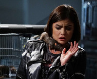 Aria Scared of the Rat